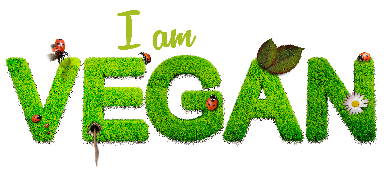 A vegan lifestyle